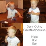 Learning a Second Language: Baby Signing