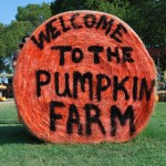 Take a Drive to the Big Orange Pumpkin Farm