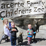 Five Reasons to Visit the Lacerte Family Children's Zoo