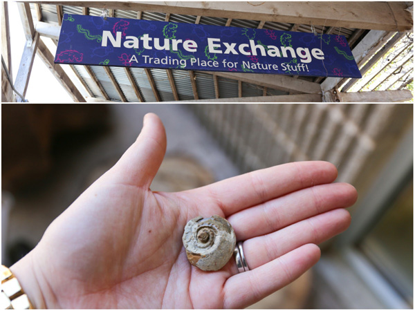 Nature Exchange