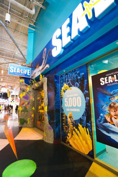 SeaLife-012