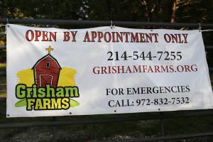 Grisham Farms Birthday