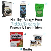 Healthy Allergy-Free Toddler & Preschooler Snack and Lunch Ideas | Dallas Moms Blog