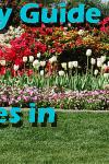Spring Activities Slide