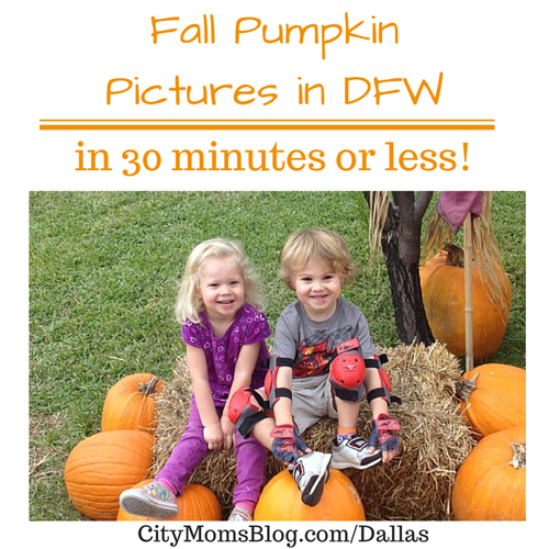 Fall Pumpkin Pictures in DFW (in under 30 minutes)   Dallas Moms Blog