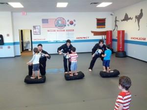 PRO Martial Arts ARMOR 2