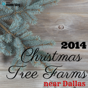 Christmas Tree Farms near Dallas