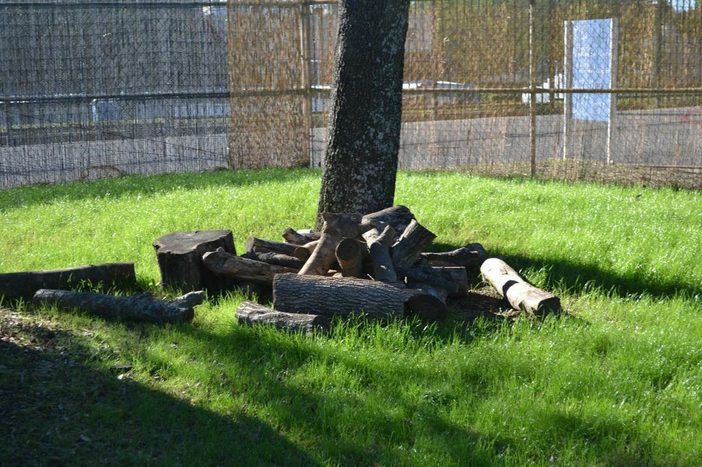 Pieces of logs and branches can be used as blocks, or to stack and build structures--Lincoln Logs anyone?