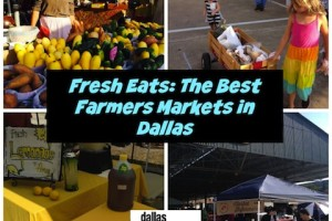 farmersmarketcollage_farmersmarket_dallasmomsblog