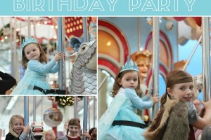 Carousel Birthday Indoor Party Dallas