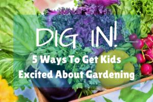 Dig In Dallas Moms Blog