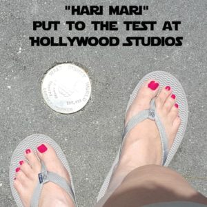 Hari Mari Dallas Moms Blog 3