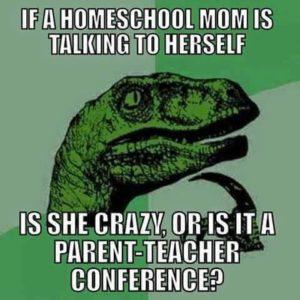 crazy homeschool mom