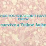 Things You Shouldn't Have to Know: How to Survive a Yellow Jacket Attack