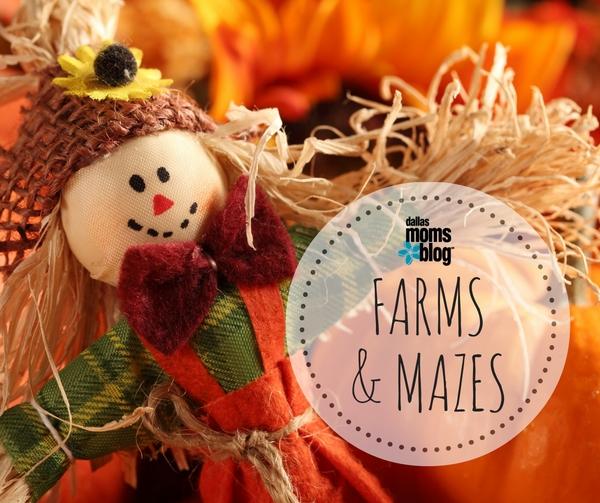 featured-image-farms-mazes-dallas-moms-blog