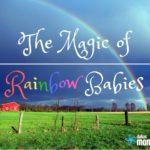 The Magic of Rainbow Babies