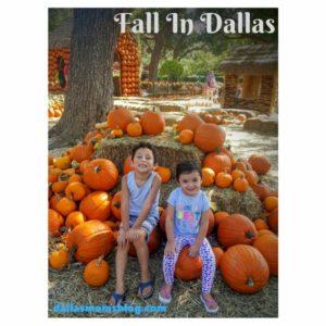 Fall In Dallas Dallas Moms Blog