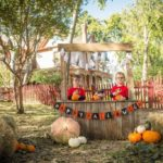 What a Spooktacular Time! : A Recap of DMB's 5th Birthday Bash with Energy Ogre