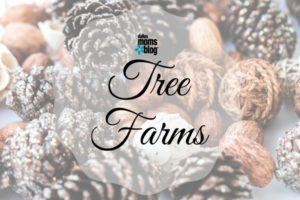 christmas-tree-farms-dallas-moms-blog
