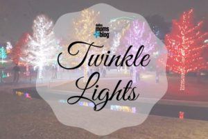 twinkle-lights-2016-dallas-moms-blog