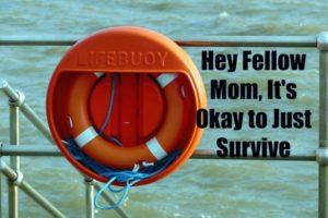 lifebuoy-1021102_960_720