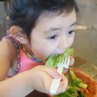 4 Meals for Dinner Dallas Moms Blog