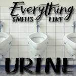Everything Smells Like Urine: 4 Methods To Clean That Smell Out Of Your Bathroom
