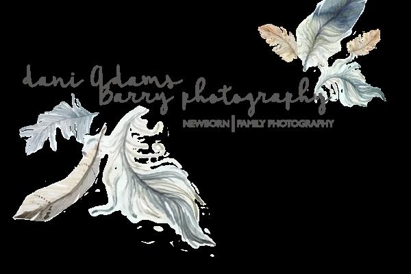 dani_adams_barry_photography_logo