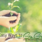 10 Easy Ways to Go Green that Won't Cost You a Bundle