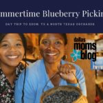 Summer Blueberry Picking Guide for Dallas Day Trip