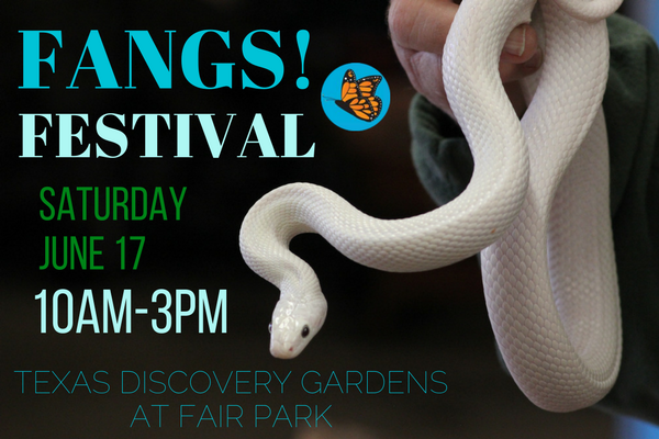 Fangs Festival Texas Discovery Gardens
