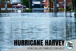 HURRICANE HARVEY - Dallas Families Can Help