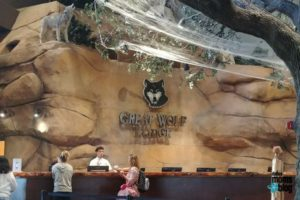 Great Wolf Lodge - 1 - Dallas Moms Blog