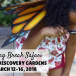 Texas Discovery Gardens: Spring Break Safari