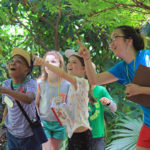 Day Camps for Your Little Entomologist at Texas Discovery Gardens