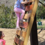 Natural Playscape Alert :: Texas Discovery Gardens