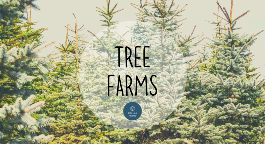 Dallas Christmas tree farms