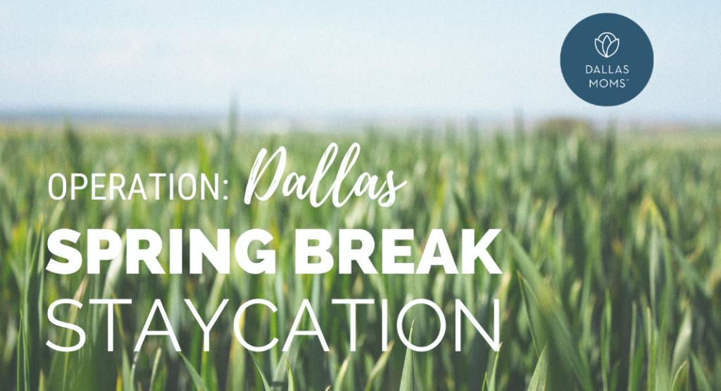 dallas staycation spring break