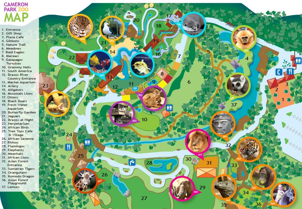 Cameron Park Zoo Map