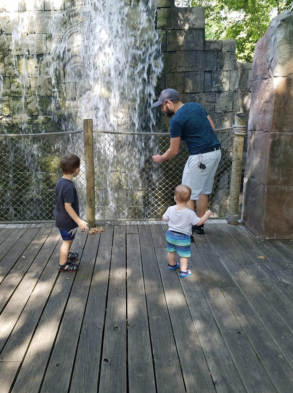 cameron-zoo-waterfall