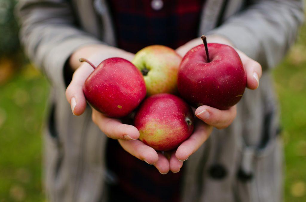 Dallas Moms Fall Apple Recipes